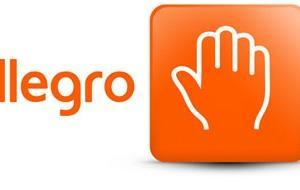 Allegro najpopularniejszym serwisem e-commerce na Facebooku